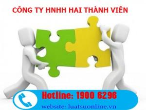 Đặc điểm của công ty TNHH 2 thành viên
