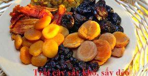 Tư vấn công bố chất lượng trái cây sấy khô, sấy dẻo