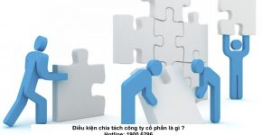 Điều kiện chia tách công ty cổ phần là gì ?